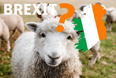 Brexit in Irland